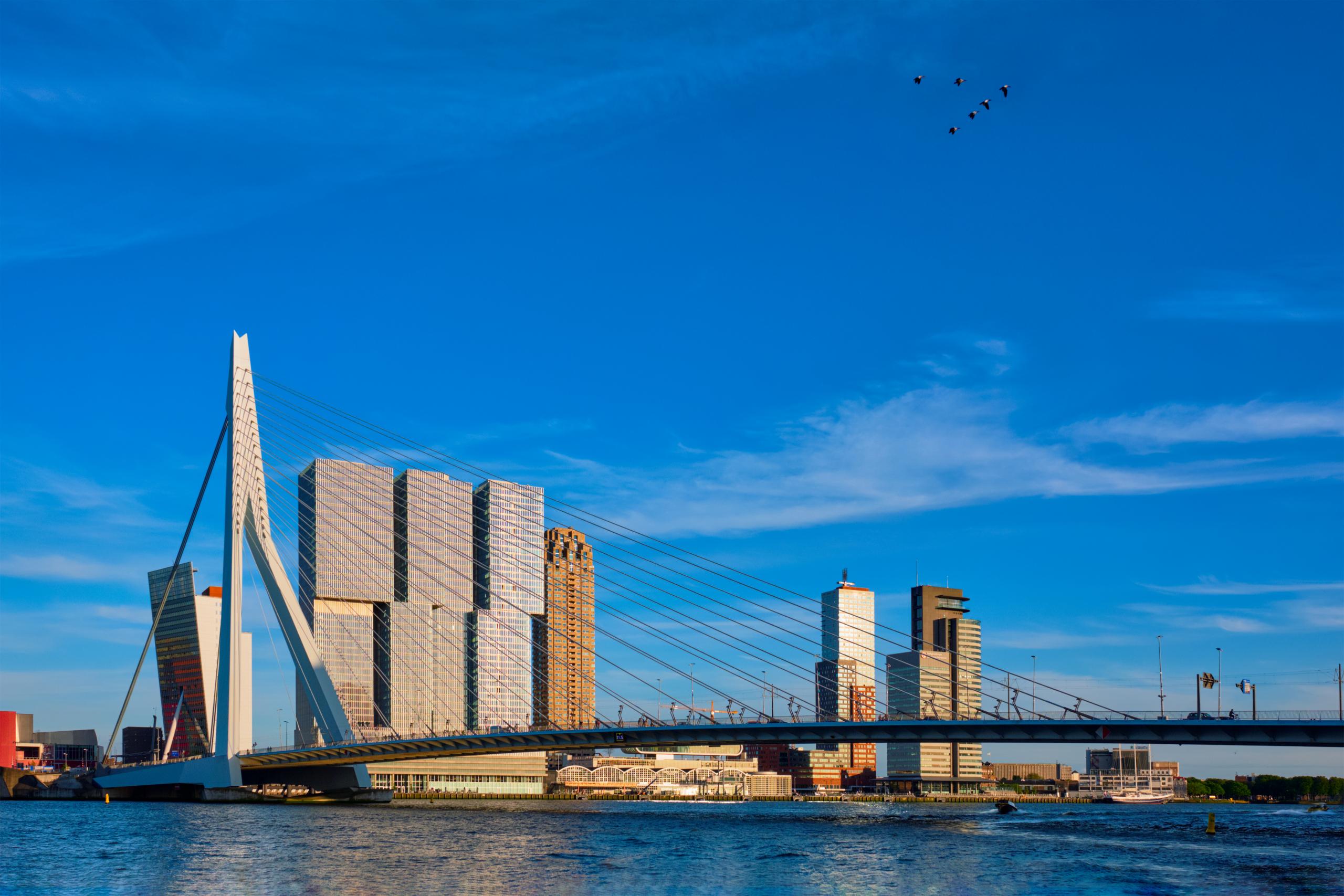 Rotterdam erasmusbrug over de maas